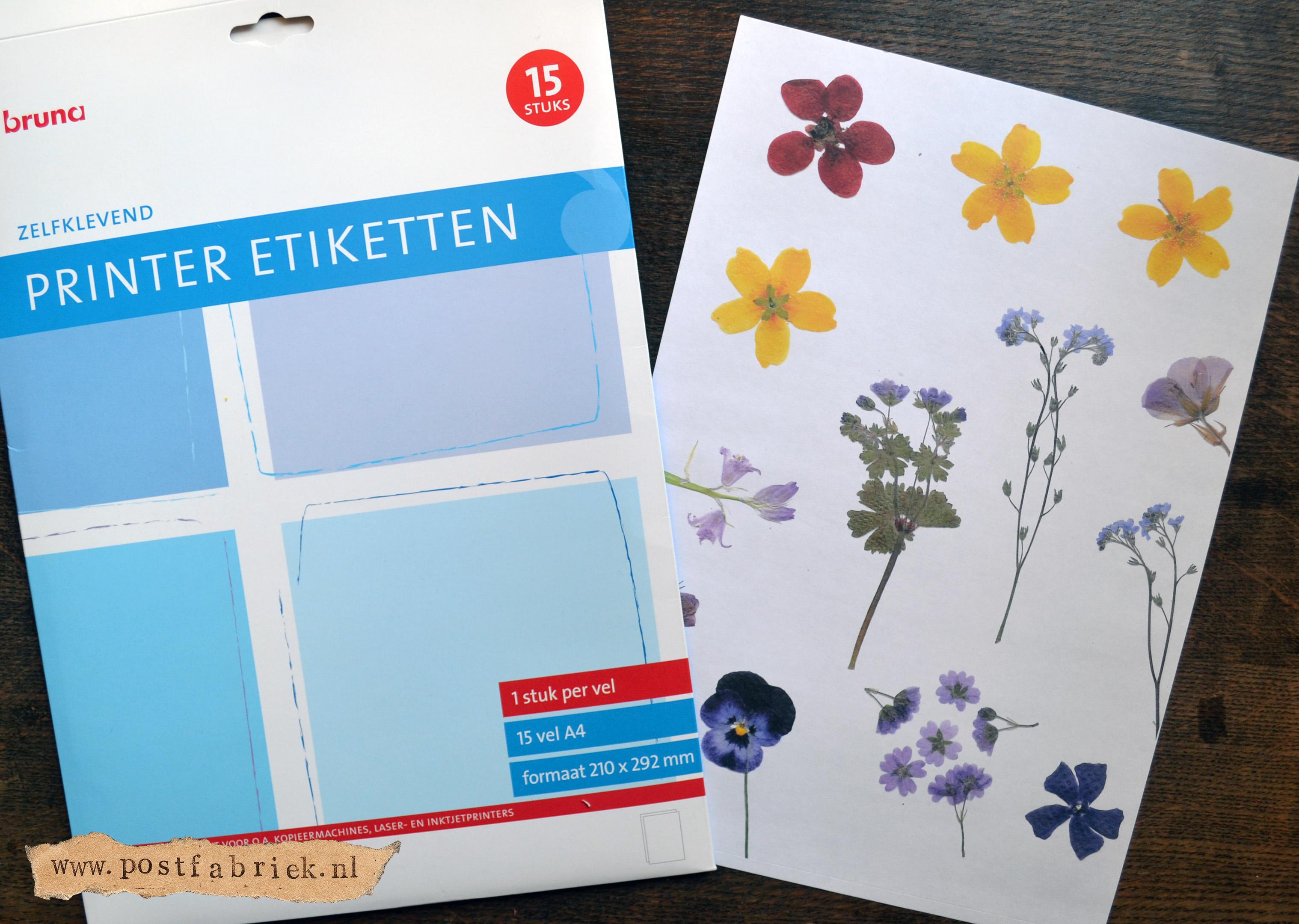 papieren slinger bloemen