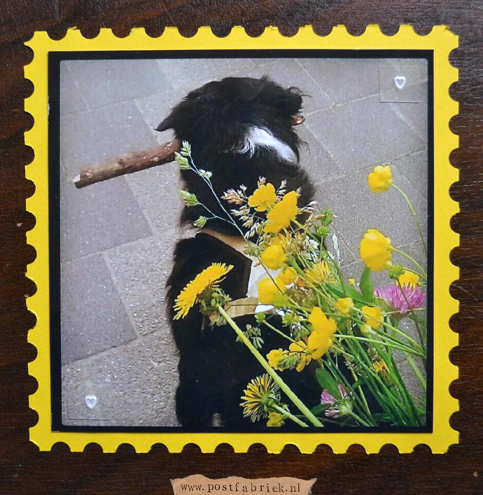 Postzegelrand 1