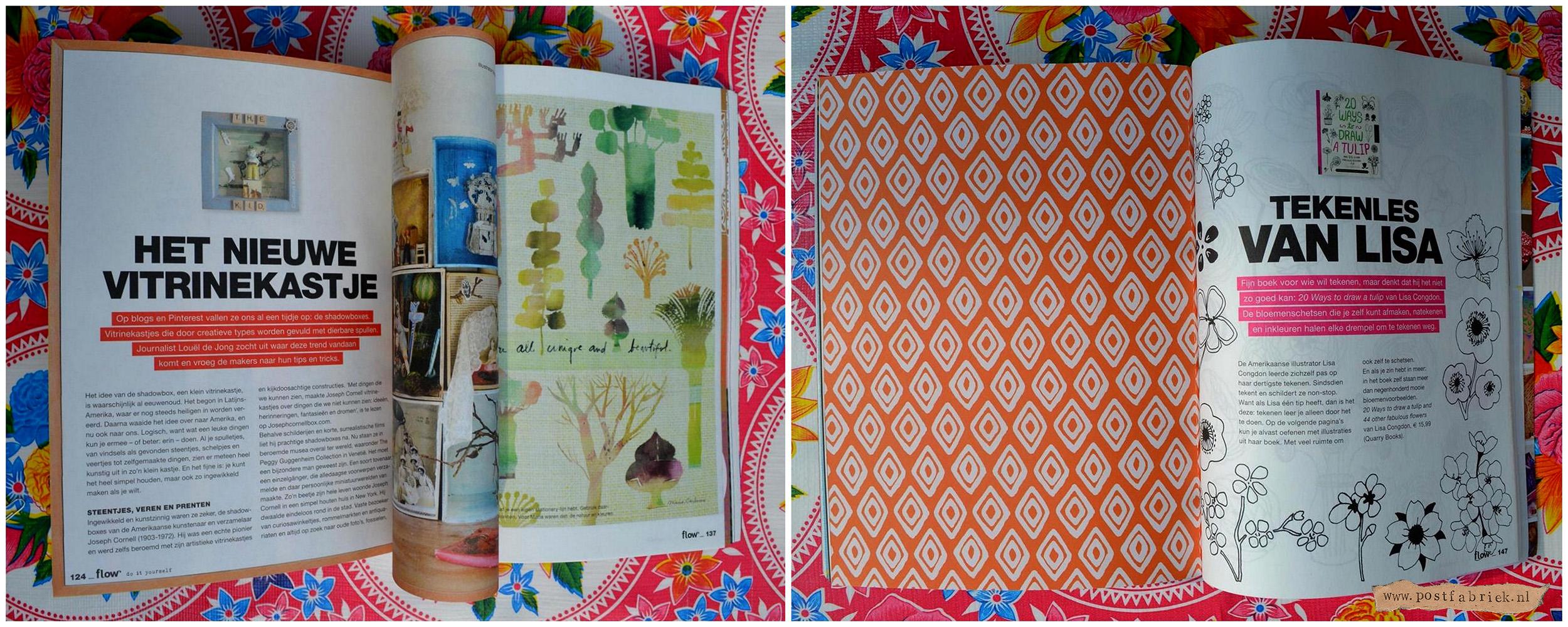 Flow Special DIY Kleuren en Plakken