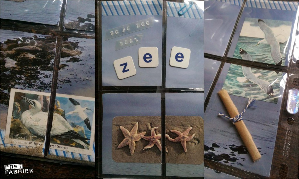 Zee PL 3