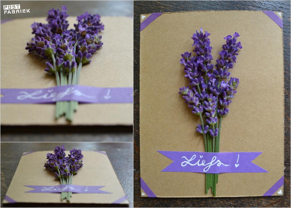 Bloemen Drogen Lavendel-002
