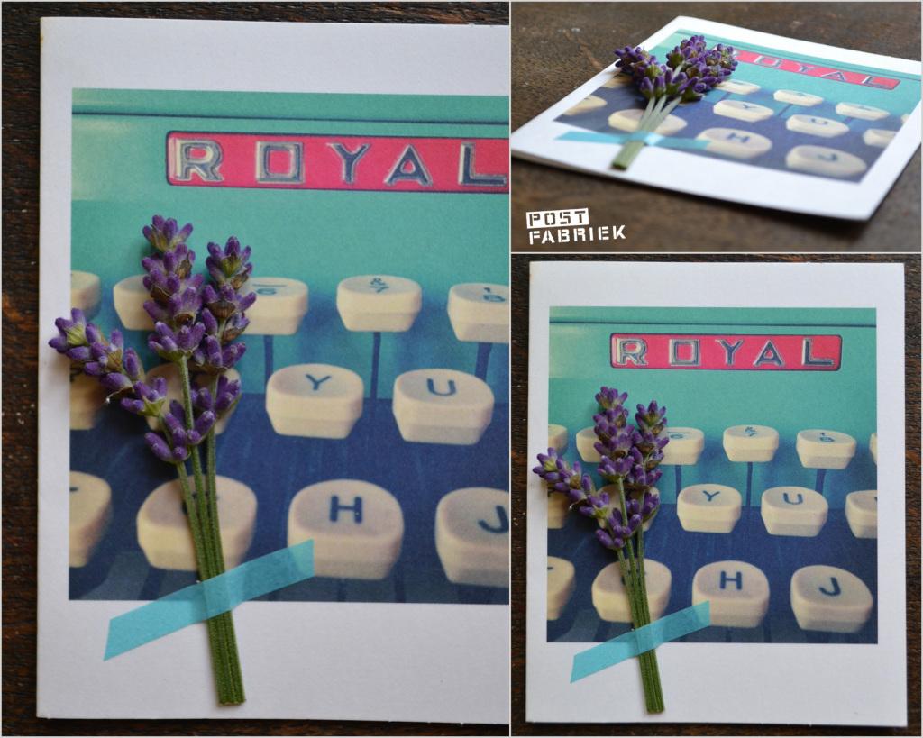 Bloemen Drogen Lavendel