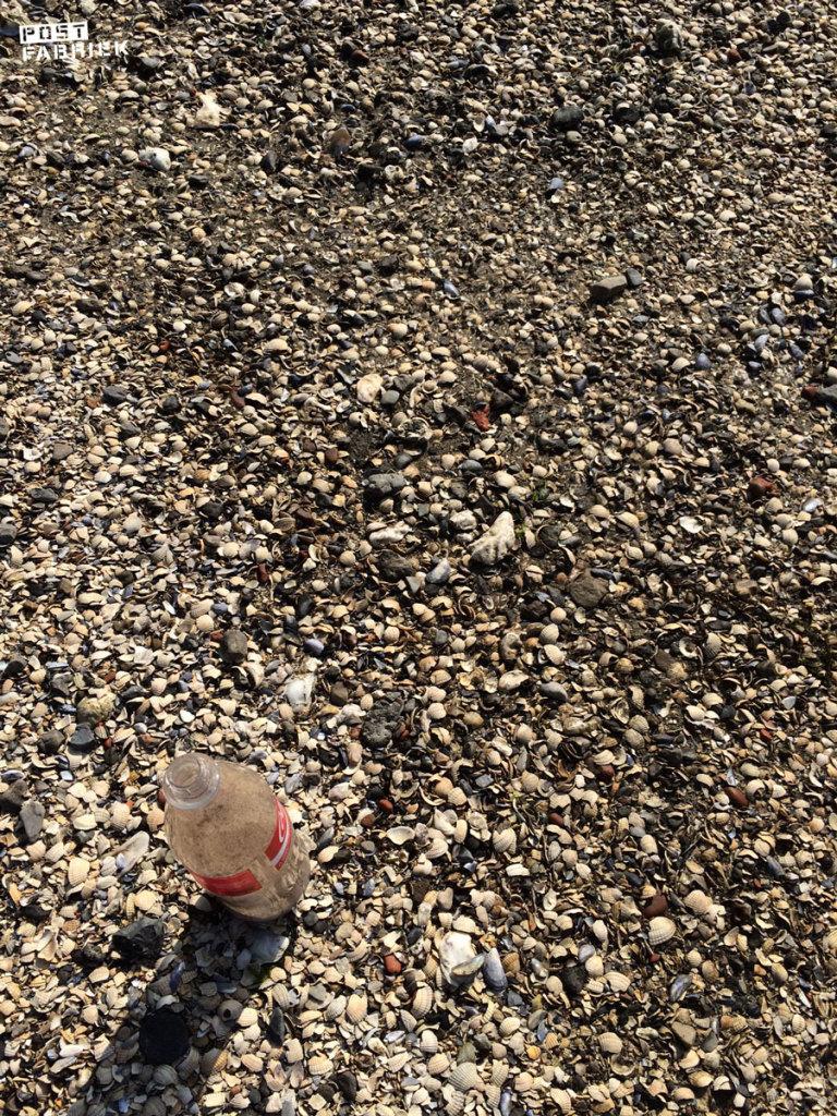 Mooie schelpjes uitzoeken die in de fles passen