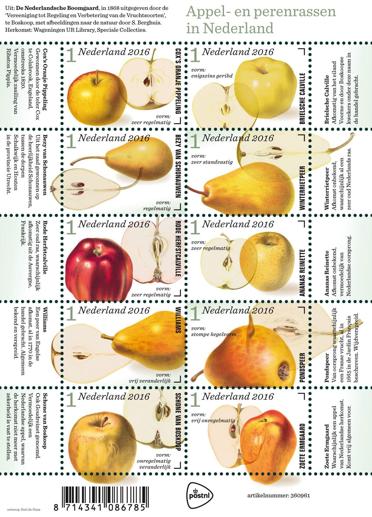 Appel en perenrassen