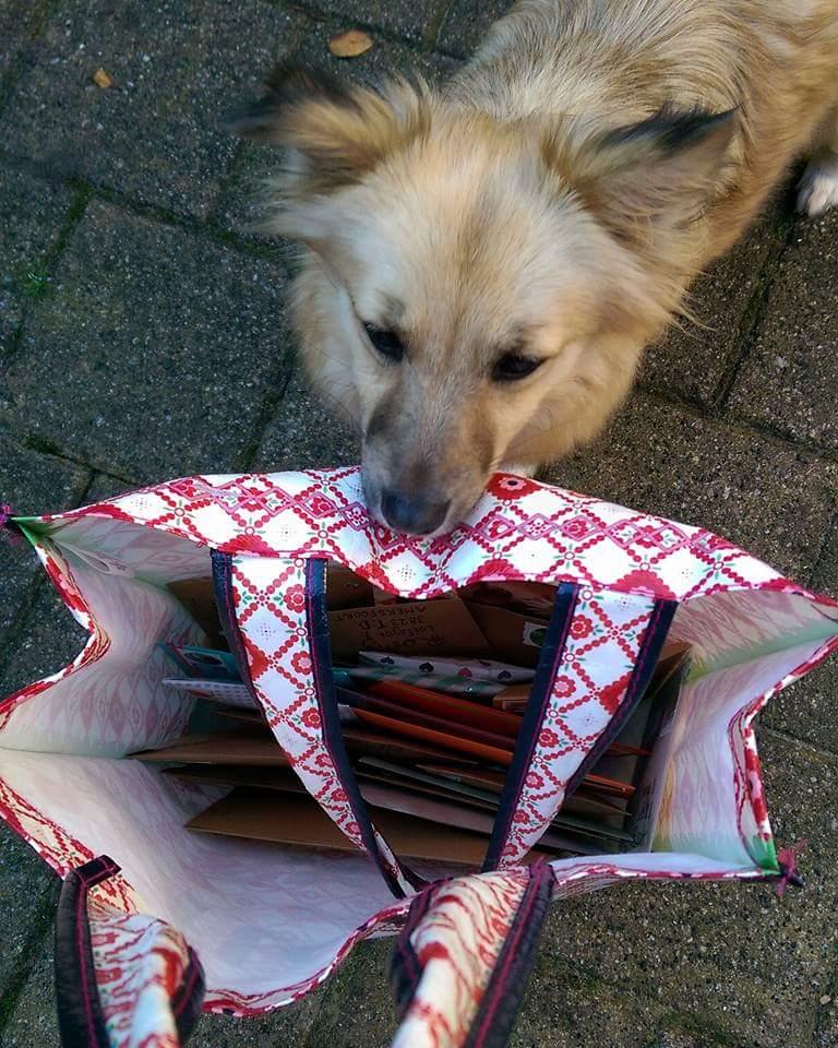 Tas vol huisdierenpost