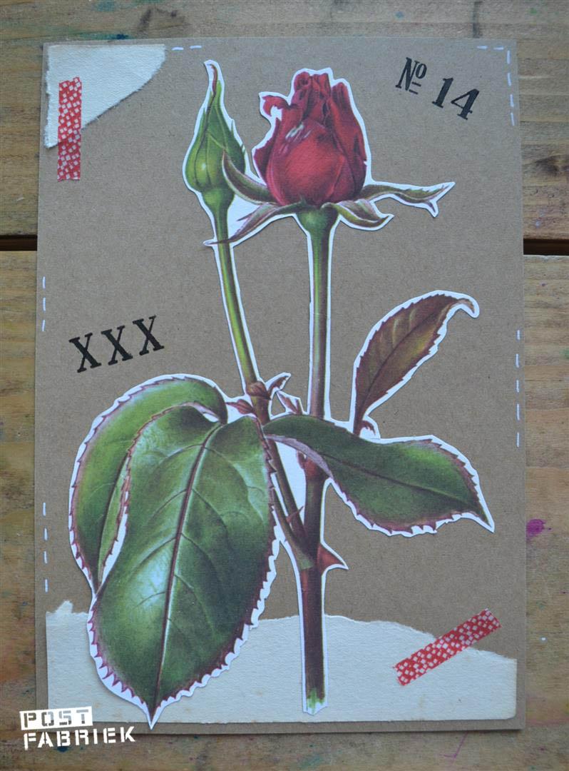 enkele roos