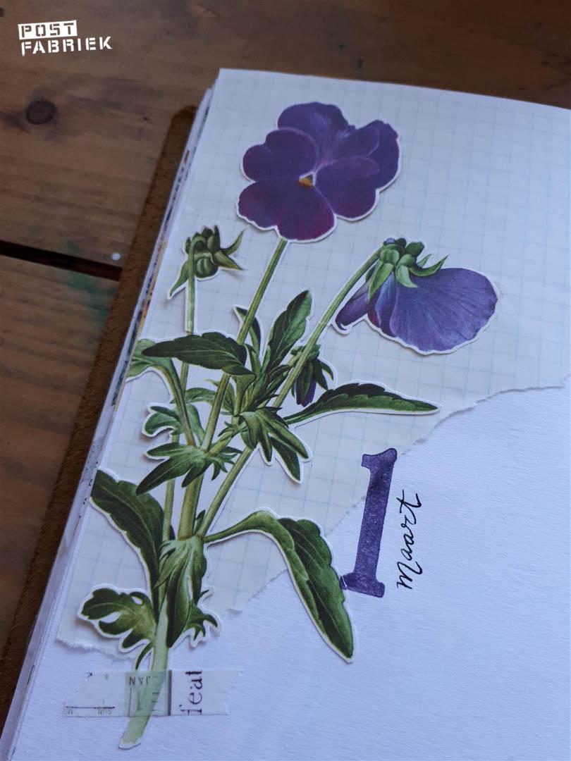paars journal