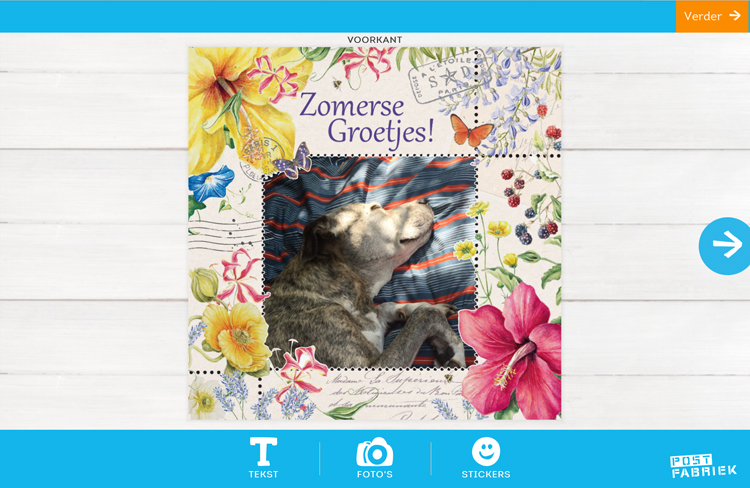 Nienke van de Postfabriek stuurt vakantiegroetjes vanuit huis met de fotokaarten van Greetz! Deze kaart met zomerse groetjes wordt nog persoonlijker met foto van eigen hond.