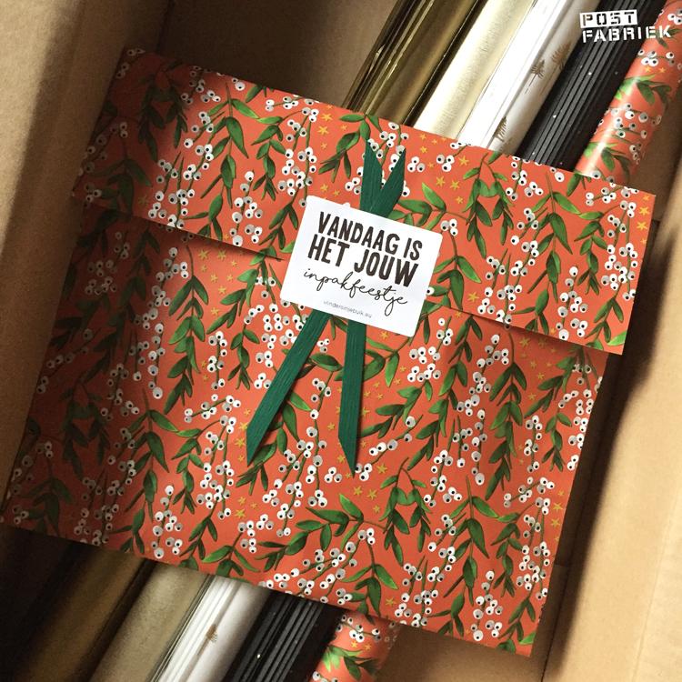 Dit is mijn winterse bestelling van Vlinders in je buik. Op de sticker staat 'Vandaag is het jouw inpakfeestje' en zo voelt het ook!