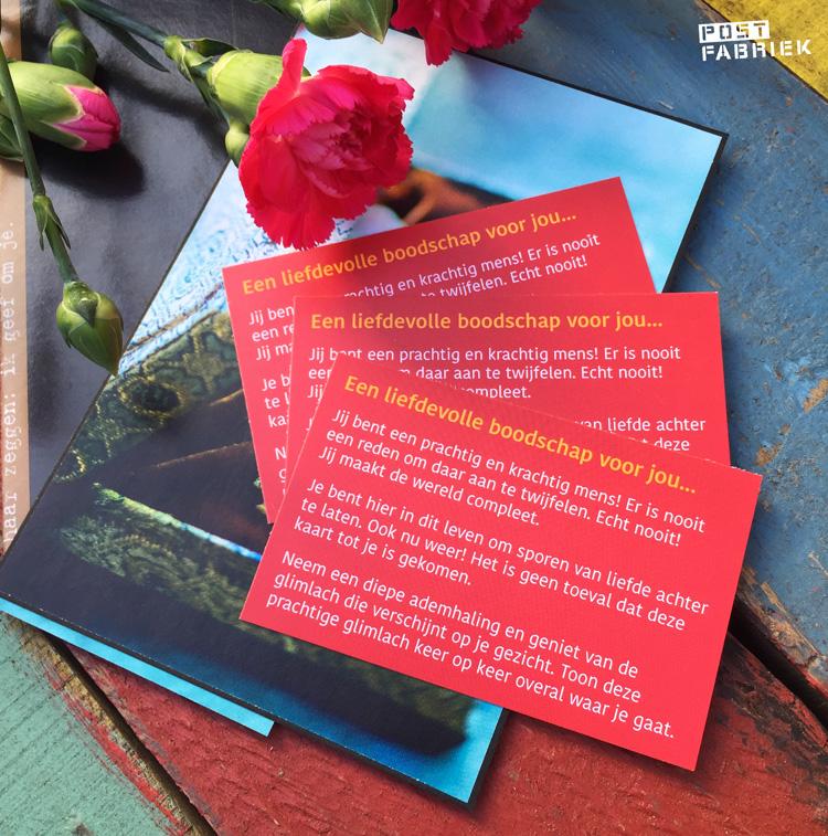 Kaartjes met een liefdevolle boodschap van The Love Trail.