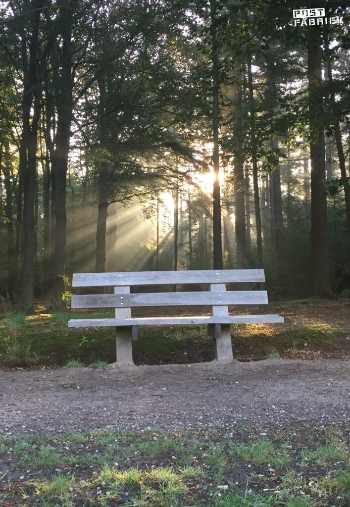 Een van mijn favoriete bankjes in een gebied waar ik veel wandel met op de achtergrond de zon die door de bomen schijnt waardoor er hele mooie zonnestralen ontstaan.