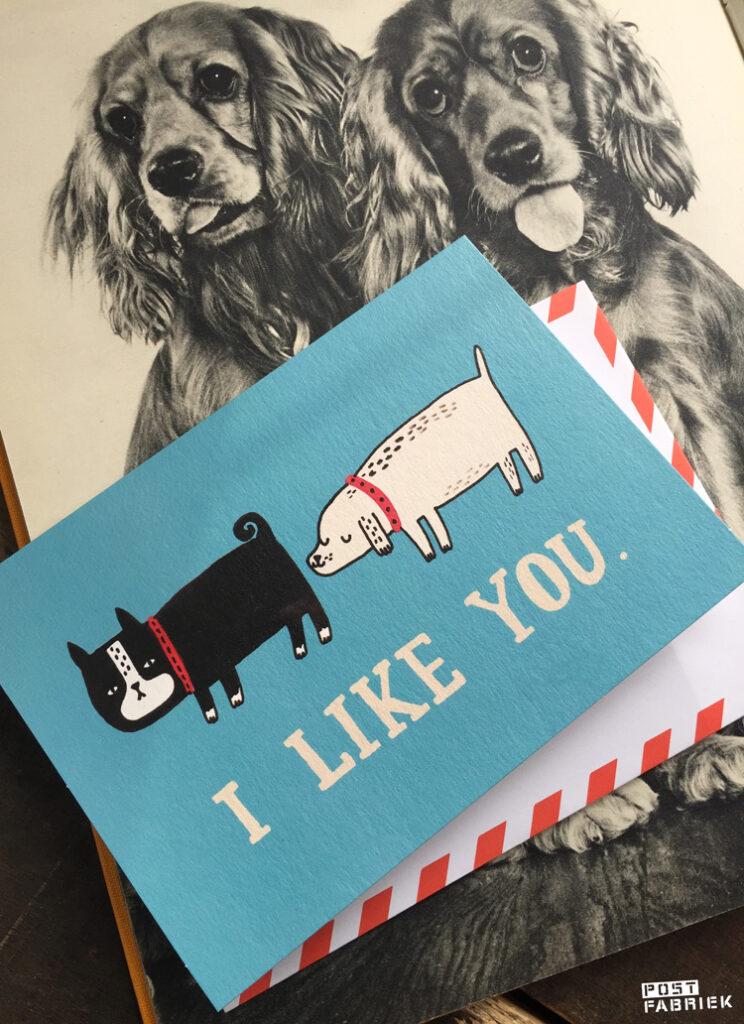 Deze wenskaart met hondjes die aan elkaar snuffelen en de tekst 'I like you' is ook ontworpen door Gemma Correll en kan je vinden bij Hartje Mezelf.