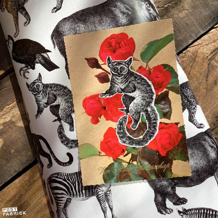 De dieren op het cadeaupapier knip ik graag uit om bijvoorbeeld bijpassende kaartjes te maken. Op deze foto heb ik de ringstaartmaki (?) uitgeknipt en op een kringloopvondst geplakt.