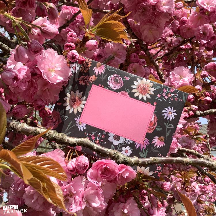 Een vouwenvelop met bloemen die door Jennifer Orkin Lewis zijn geschilderd.