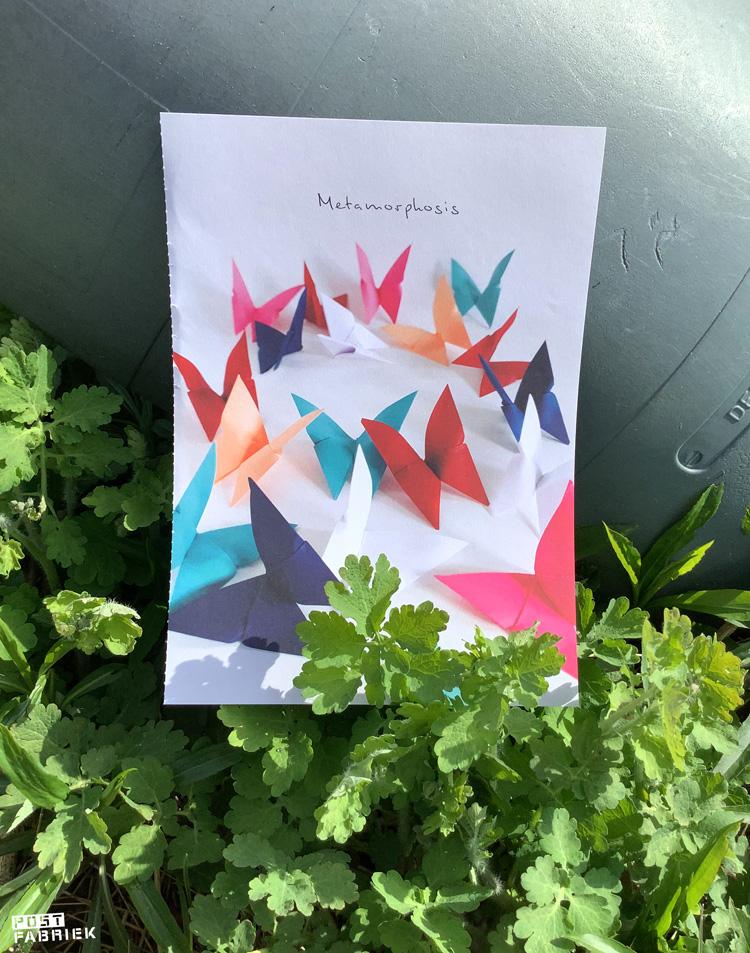 Leer stap voor stap origami vlinders vouwen in het Flow Book for Paper Lovers.