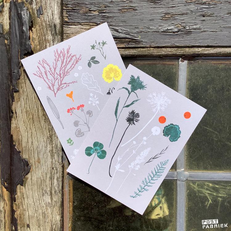 Twee kaartjes met illustraties van Deborah van der schaaf.