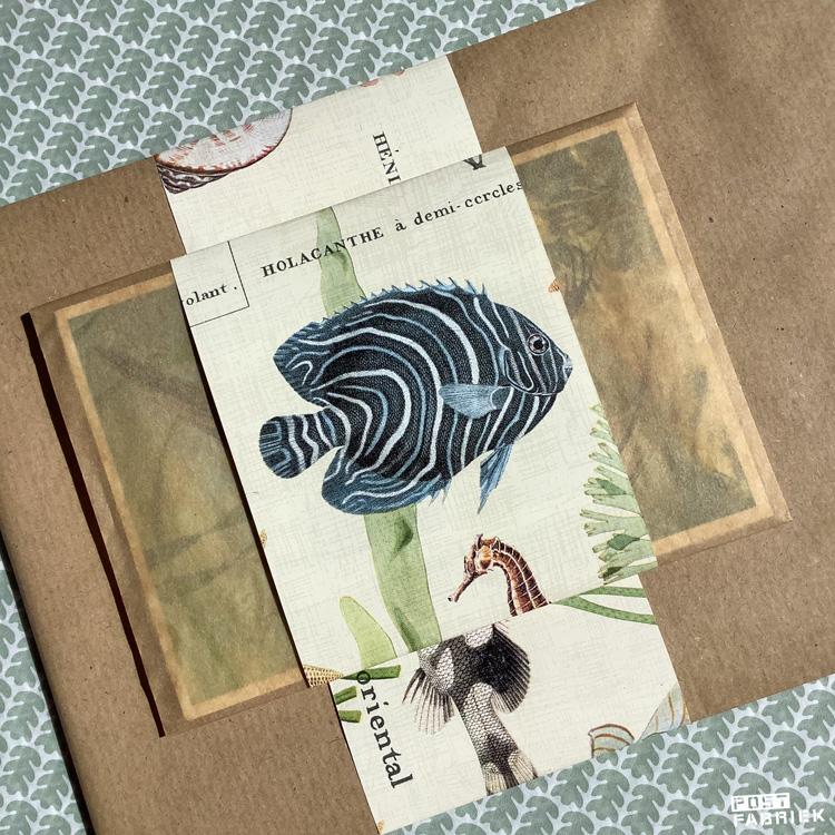 Papieren boterhamzakje van EkoPlaza met een band van het mooie papier met onderwaterwereld print van Vlinders in je buik.