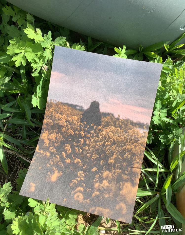 Een van de posters die je in het Flow Paper Book for Nature Lovers kunt vinden.