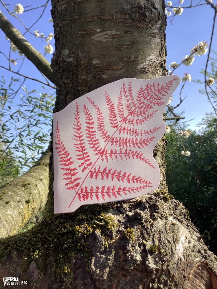 Een boekje in de vorm van een varen uit het Flow Paper Book for Nature Lovers met illustraties van Deborah van der Schaaf.