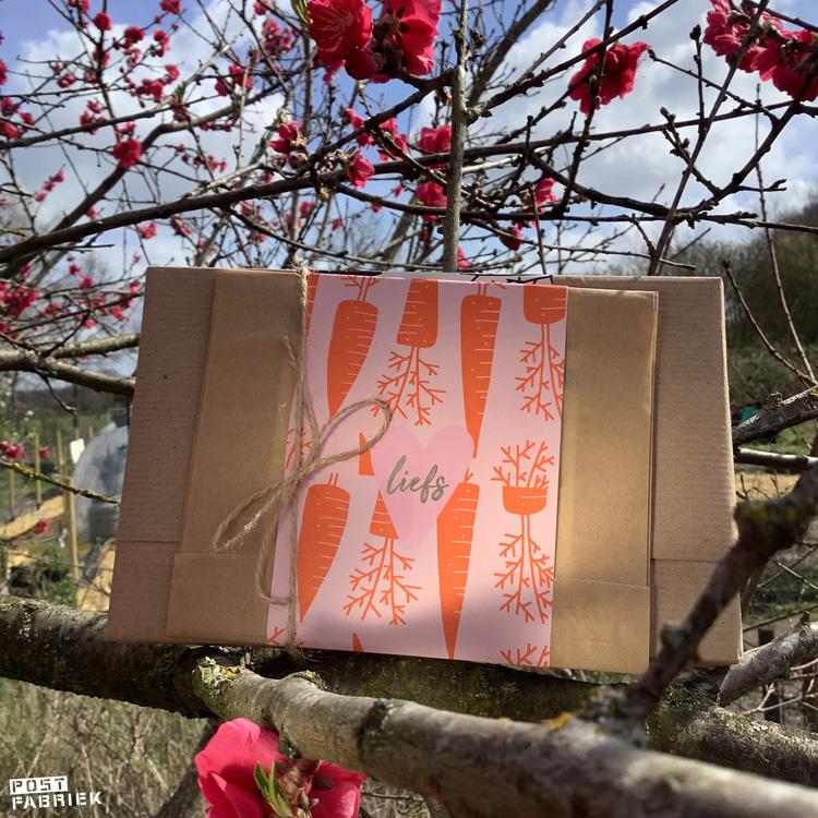 Voor deze pakjes combineerde ik kraftpapier met papieren moois van Vlinders in je buik. Het papiertje met wortels is eigenlijk een sinterklaaspapiertje, maar gebruik ik ook graag voor moestuinpost.