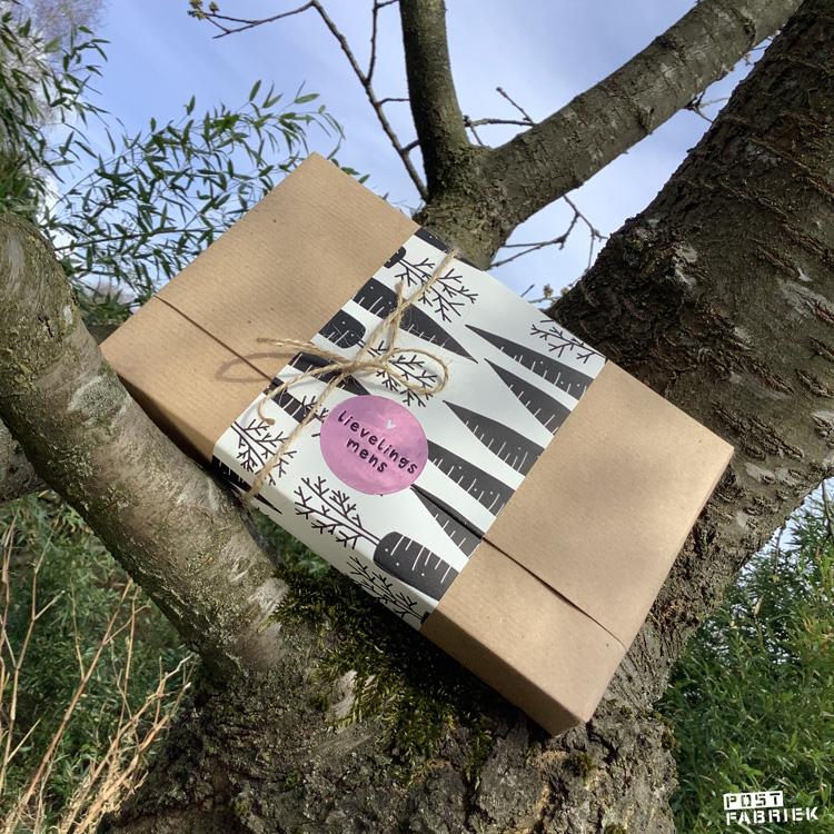 Pakje met papier en sticker van Vlinders in je buik.