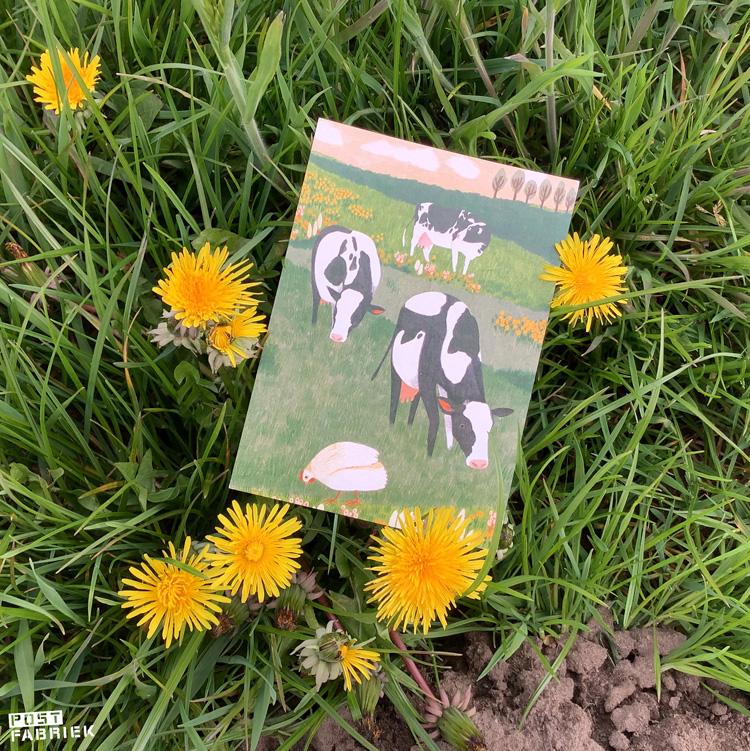 Een kaartje met een illustratie van Lieke van der Vorst van Liekeland. Het kaartje is te koop bij Dille & Kamille. 20% van de opbrengt gaat naar World Animal Protection. Deze organisatie zet zich in voor de bescherming van wilde dieren, huisdieren, dieren in de vee-industrie en dieren in rampsituaties.