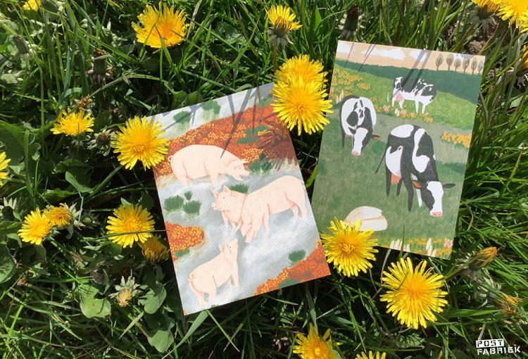 Twee kaartjes met een illustratie van Lieke van der Vorst van Liekeland. De kaartjes zijn te koop bij Dille & Kamille. 20% van de opbrengt gaat naar World Animal Protection. Deze organisatie zet zich in voor de bescherming van wilde dieren, huisdieren, dieren in de vee-industrie en dieren in rampsituaties.